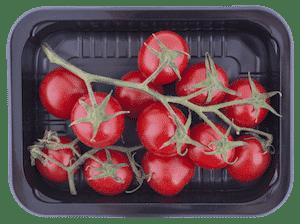 Tomaten Plastikschale