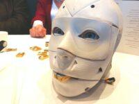 Zukunft des Kunststoffs - FabLab Humanoider Roboter