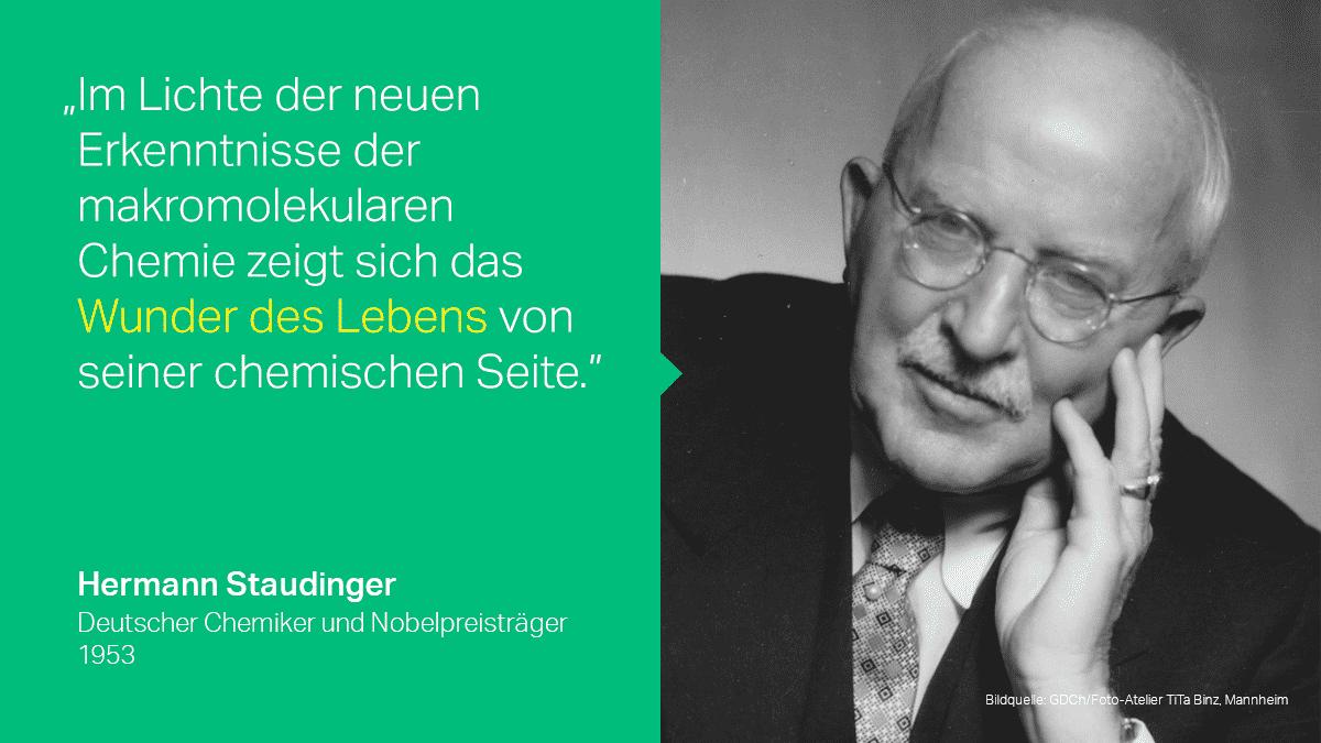 Hermann Staudinger, Begründer der makromodularen Medizin
