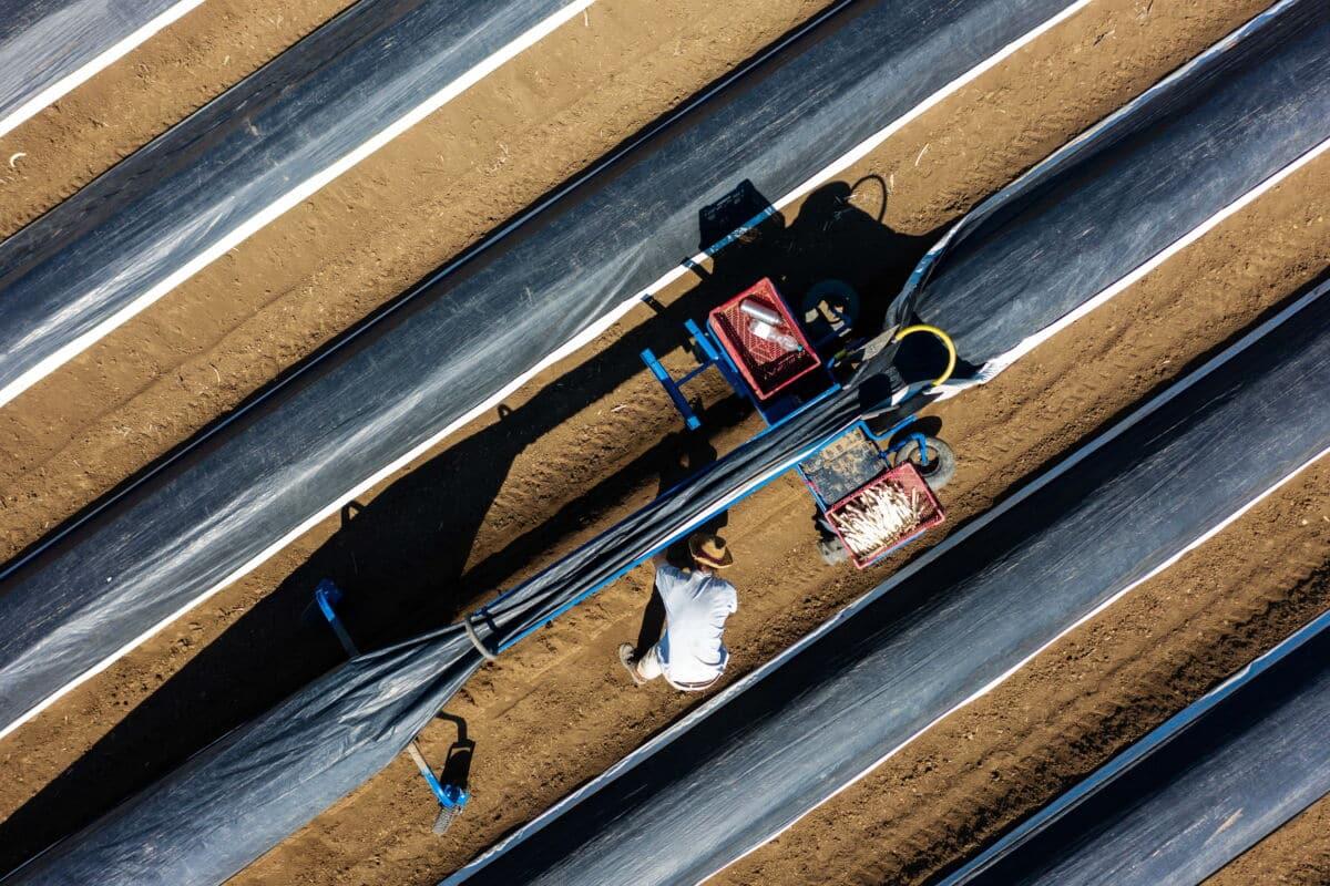 Agrarfolien Initiative ERDE gegen Kunstoff in der Umwelt